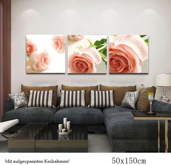 herr malen nach zahlen f r erwachsene xxl mit aufgespannter staffelei 3 bilder je 50x40cm x3. Black Bedroom Furniture Sets. Home Design Ideas